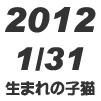 2012年1月31日生まれの子猫