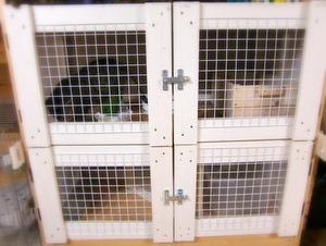 ベンガル猫出産用ケージ写真