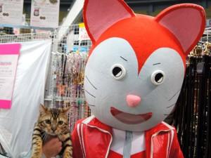 怪しい猫とナイト